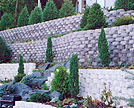 Our Designers Can Create  the Perfect Landscape And Retaining Walls.